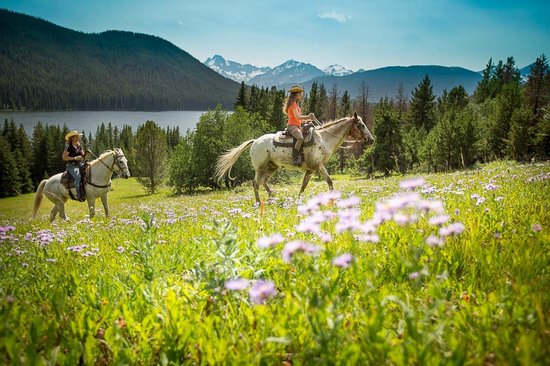 Gold Bridge, Kanada: Horseback Riding around Spruce Lake with the wildflowers in bloom.  Photo Andrew Doran