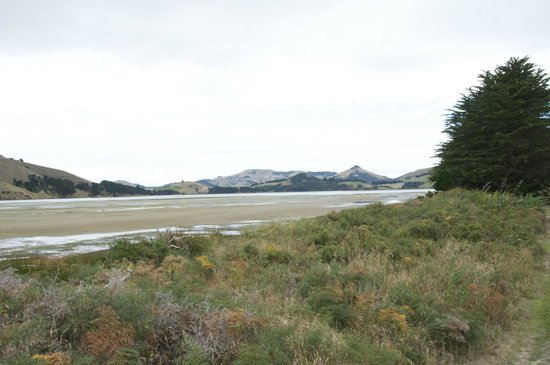 how to get to otago peninsula from dunedin