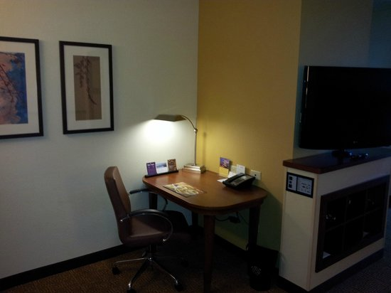 Hyatt Place Charleston Airport and Convention Center: Desk space in room
