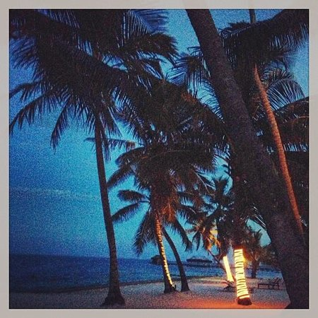 Victoria House Resort & Spa: Night view on the beach