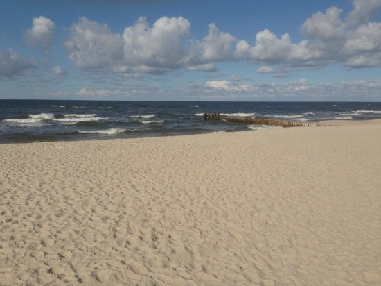 Baltic Plaza Hotel Medi SPA: The nearby beach (no beach view from the hotel)