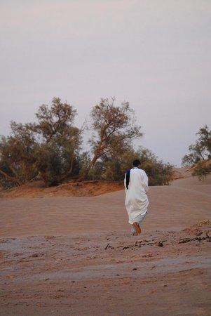 Naamani Group: Sahara