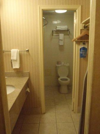 Comfort Inn Toronto Airport : room