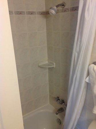 Century Plaza Hotel & Spa: washroom