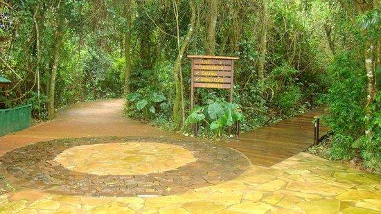 La Aldea de la Selva Lodge: CAMINITOS DEL HOTEL