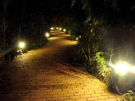 La Aldea de la Selva Lodge: CAMINITOS DEL HOTEL POR LA NOCHE
