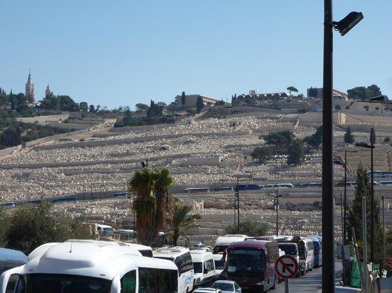Eva-Israeltours: Blick auf die Gräber
