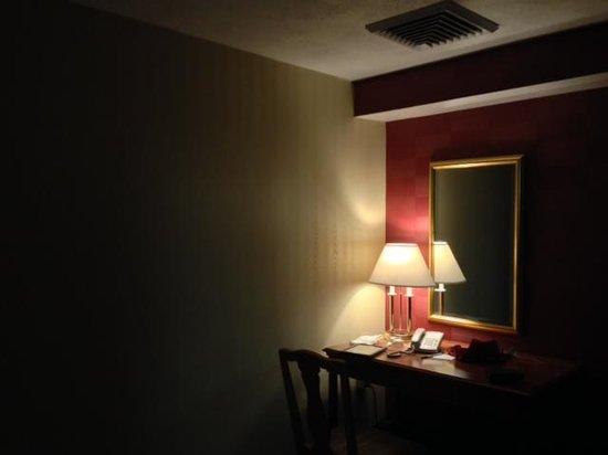 Holiday Inn Boston Brookline: Dark and gloomy lighting