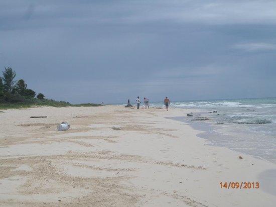 Sole Y Luna B&B : spiaggia e mare