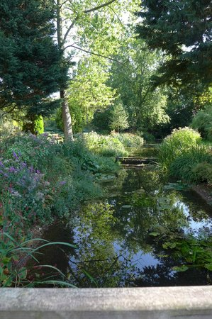 Gooderstone Water Gardens & Nature Trails: In the shade on a hot day......