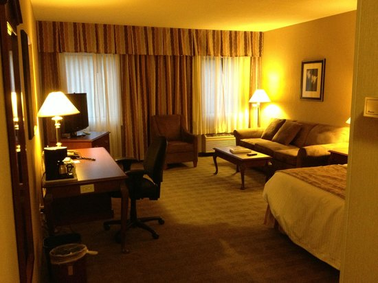 Ramada Kelowna Hotel and Conference Centre : Room