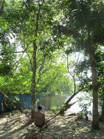 Marari Secret Beach Yoga Homestay: garden