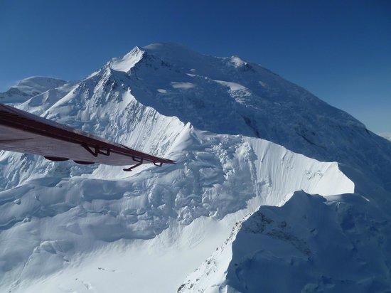 Talkeetna Air Taxi: View