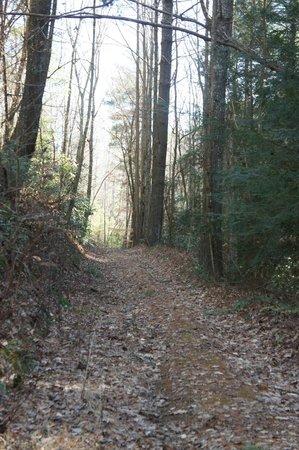 Hearthstone Lodge: private safe trails