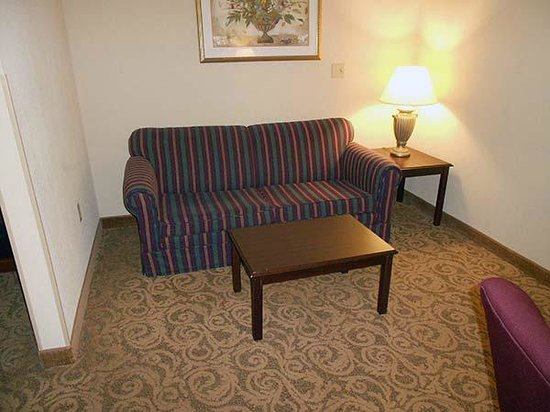 Sturbridge Host Hotel & Conference Center: Nice couch, but since there was no luggage rack we had to put our suitcases there