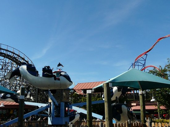 Discovery kingdom vallejo coupons 2018