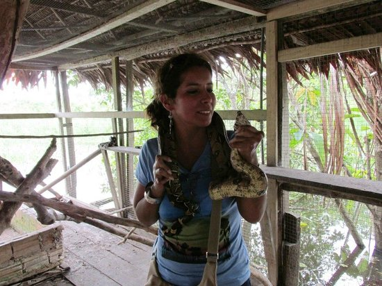 Amazon Rainforest Lodge: Atraciones