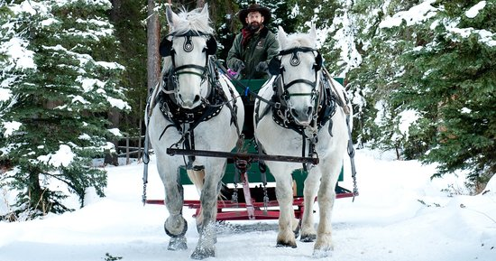 Sleigh Rides Photo By Big Sky Winter