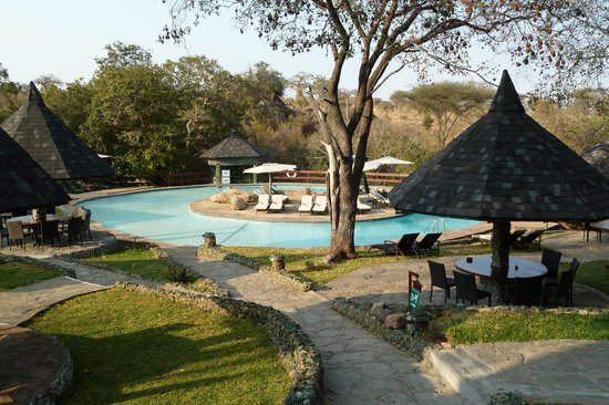 Tarangire Sopa Lodge: Piscine