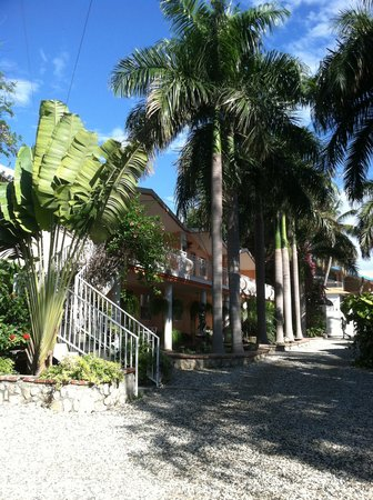 Palm inn updated 2017 hotel reviews price comparison for Garden pool haiti