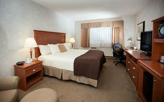 Best Western Truro - Glengarry: King corporate room with free wi-fi