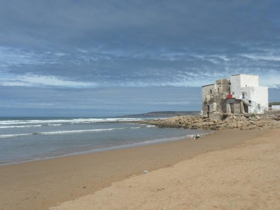 La Mouette et les Dromadaires : La plage