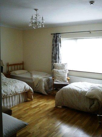 Greenacres Bed & Breakfast: Ampia camera per 3 persone con bagno privato