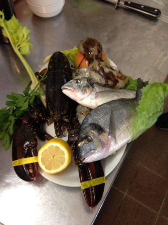 Il Viale : Fresh fish and lobster