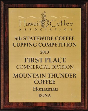2013 HCA 1st Place Commercial Division (for all Hawaii