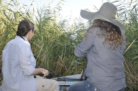 Connoisseur Travel: Getting through the reeds was an adventure.
