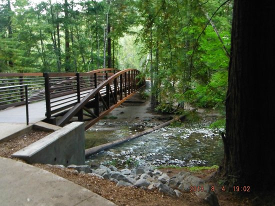 Pfeiffer Big Sur State Park: footbridge.
