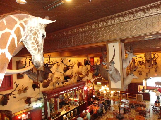 The Buckhorn Saloon and Texas Ranger Museum: Buckhorn Horns