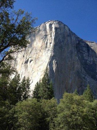 Discover Yosemite : Watched The Climbers Through Binoculars!
