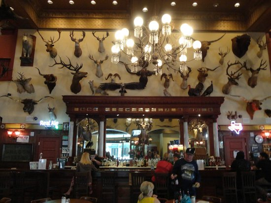 The Buckhorn Saloon and Texas Ranger Museum: Main Bar