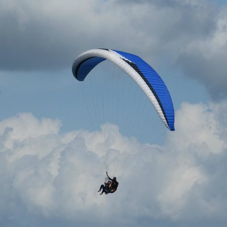 Hawk Paragliding School