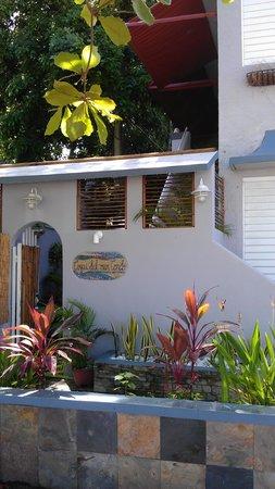 Coqui del Mar Guest House: Coqui del Mar
