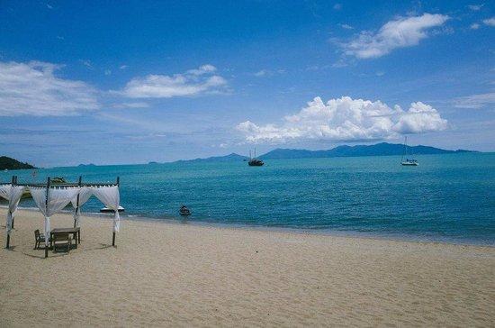 Hansar Samui Resort : beach