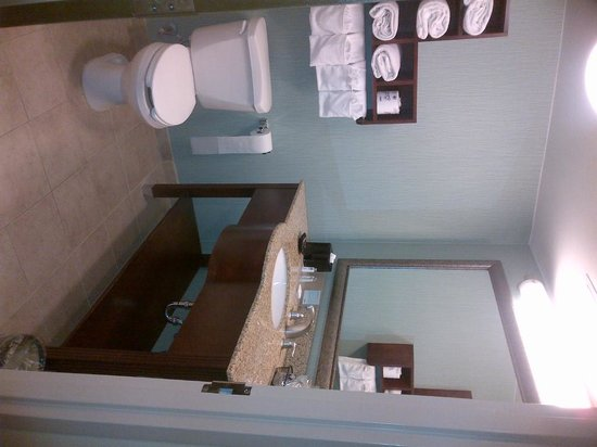 Hampton by Hilton Boca Raton: Spacious bathroom