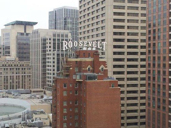 The Roosevelt Hotel: hotel