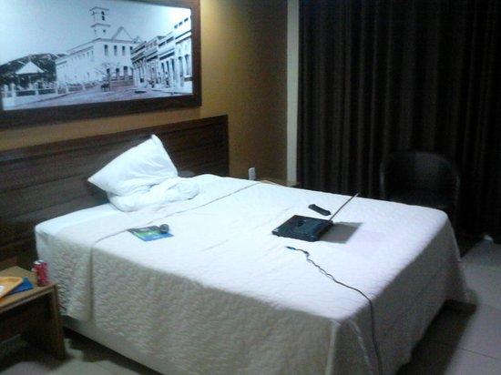 Hotel Village Caruaru : Foto do Quarto