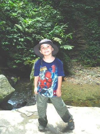 Canopy Walk: Dane Hodges in the Borneo rainforest