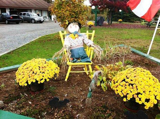 Arrowhead Inn: Cute autumn touches outside