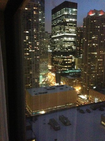 Chicago Marriott Downtown Magnificent Mile : Great view