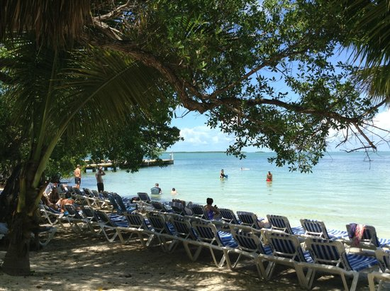 Hilton Key Largo Resort: beach area