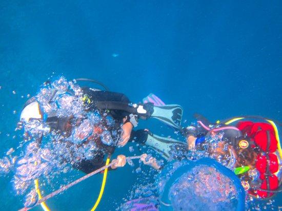 Open Water avec Bali Breizh Divers.