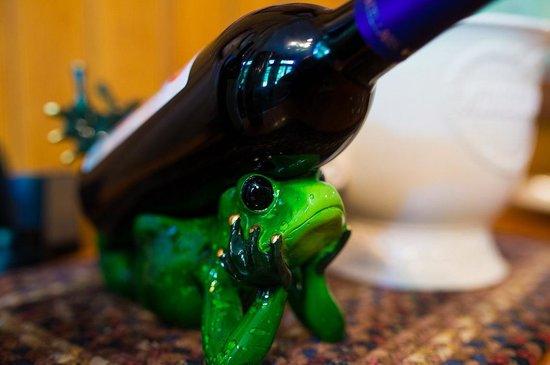 Farmers Guest House : Wino frog