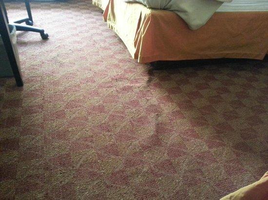 La Quinta Inn & Suites Orlando Universal Area: dirty uneven carpet