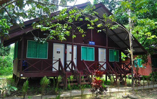 Sukau Greenview Bed & Breakfast : Jungle Cabin