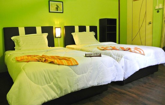 Sukau Greenview Bed & Breakfast: Twin room
