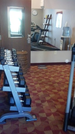 Comfort Inn & Suites: Weight bench and dumbbells